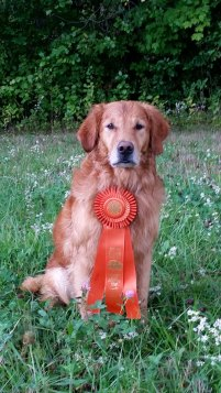 eli-2016-10-01-first-senior-hunter-pass-web