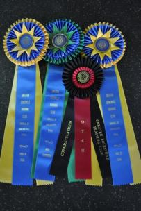 Pitch OTCH Ribbons