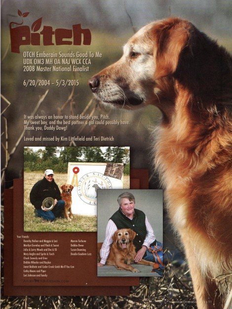 Golden Retriever News November-December 2015