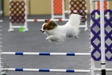 gina-0916-queen-city-jump