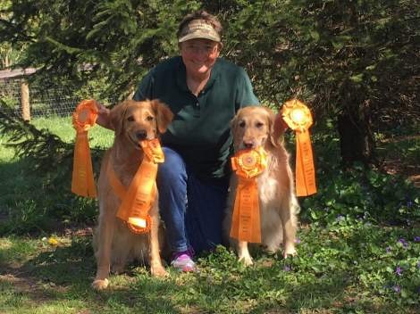 Our Dogs 2018 05 29 Coschocton Ziti Master Title Harper 4 for 4